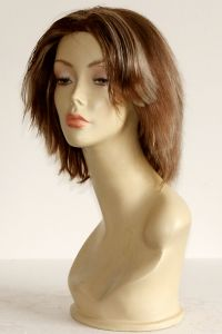 available for rent: zebra chestnut brown ash blonde wig in human hair